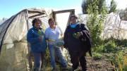 De izquierda a derecha, Nancy Millar, Blanca Molina y Patricia Mancilla en la pequeña finca de la segunda, ubicada en el pueblo de Valle Simpson, región de Aysén, en la Patagonia de Chile. Las tres integran la única asociación de mujeres campesinas del indómito territorio austral, que las ha ayudado a conquistar su autonomía económica y a empoderarse como personas. Crédito: Marianela Jarroud/IPS