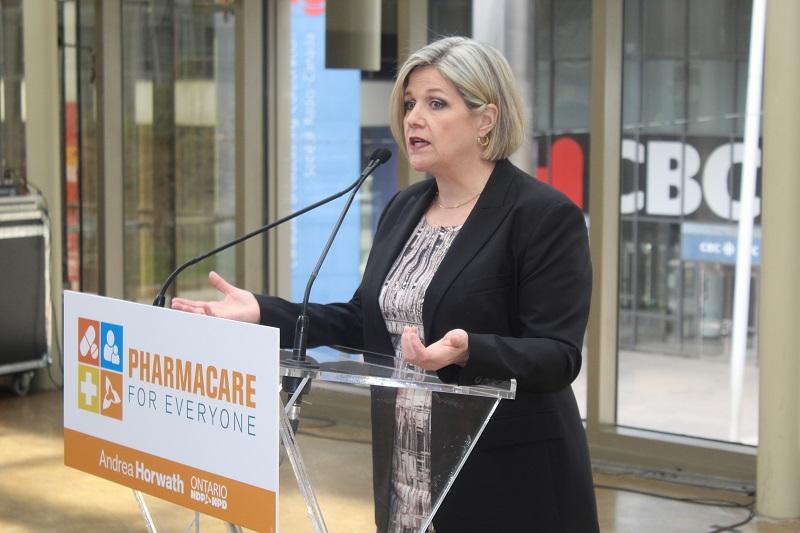 NDP Convencion 2017